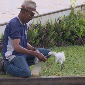SineBahia oferece vagas para auxiliar de jardinagem, atendente e outras; veja lista para Salvador e Alagoinhas