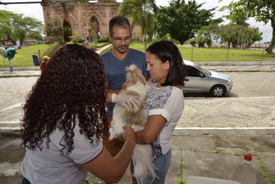 Campanha de vacinação antirrábica em Alagoinhas continua até 28 de setembro